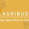 (English) Agribuddy: The Startup Hoping to Change Agriculture in Cambodia