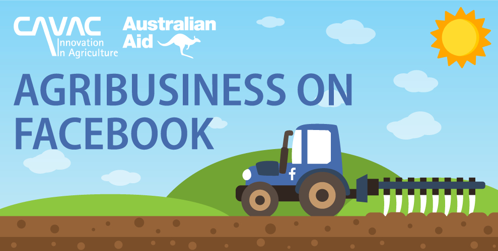 Accessing Information on Social Media: Agribusiness through Facebook
